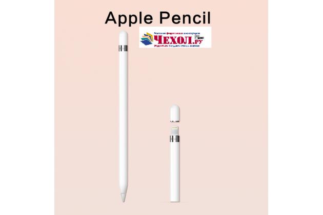 Фирменый оригинальный стержень-наконечник для стилуса Apple Pencil на iPad Pro 9.7 / iPad Pro 12.9 ( 1 шт)